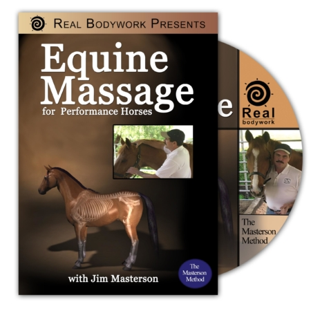 Equine Massage DVD cover
