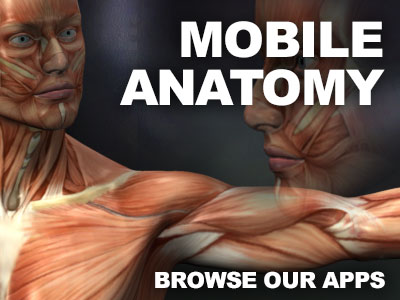 anatomy apps