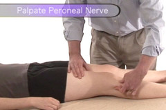 Palpation of the peroneal nerve