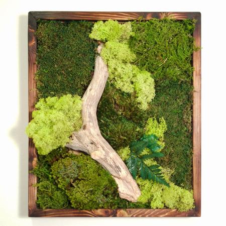 18x18-moss-art-front