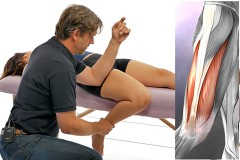 knee-flexion