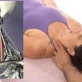 structural-massage-scalene