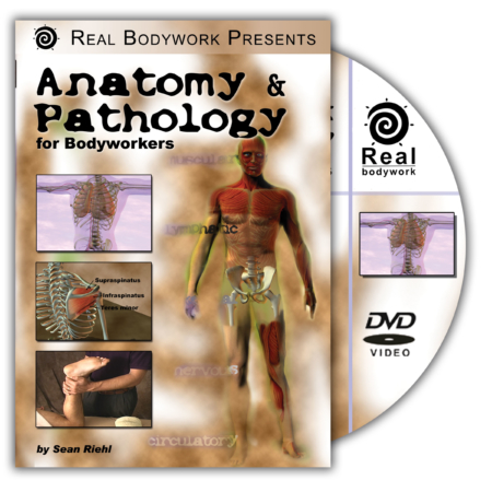Cover of the video anatomy and pathology for bodyworkers