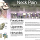 Neck pain infographic