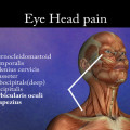 Eye and Head Pain