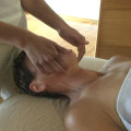 Integrative massage spirit jaw