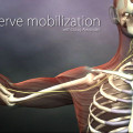 Nerve Mobilization intro