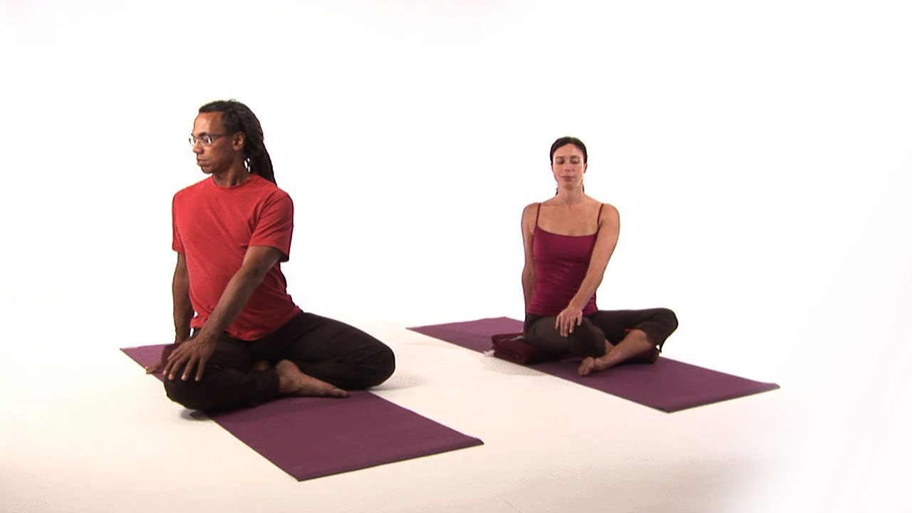 Yoga for Back Pain DVD video - Real Bodywork