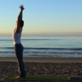 Yoga Flow DVD video