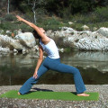 Yoga Flow DVD video