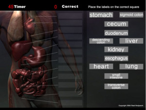 Play this anatomy game for the organs and quickly memorize the organ names.