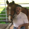 Jim Masterson and Horse