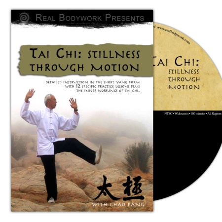 Tai Chi Stillness Through Motion DVD video