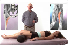 Orthopedic massage for the adductor