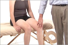 Orthopedic assessment of the knee