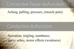 Connective tissue dysfunction leads to conductive dysfunction.
