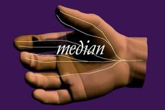 wrist-nerve