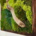 18x18-sideview-moss-art